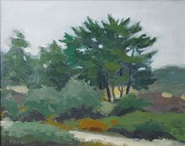 Evergreens at Ack, 8x10