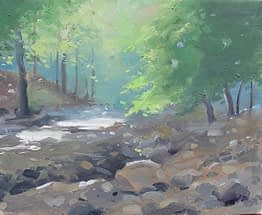 Creek at Reeves, Harriman, 8x10