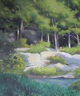 Pond at Turkey Hill 2014